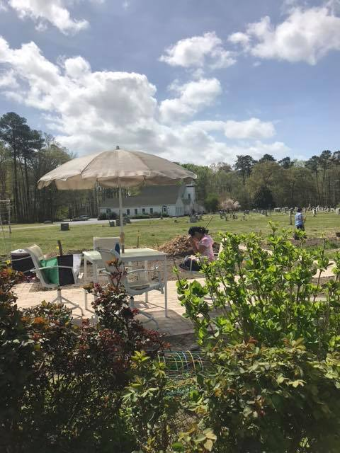 nimmo community garden